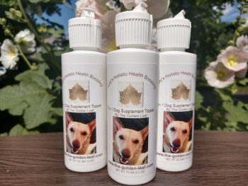 holly's holistic health boosting 8 in 1 Dog supplement topper