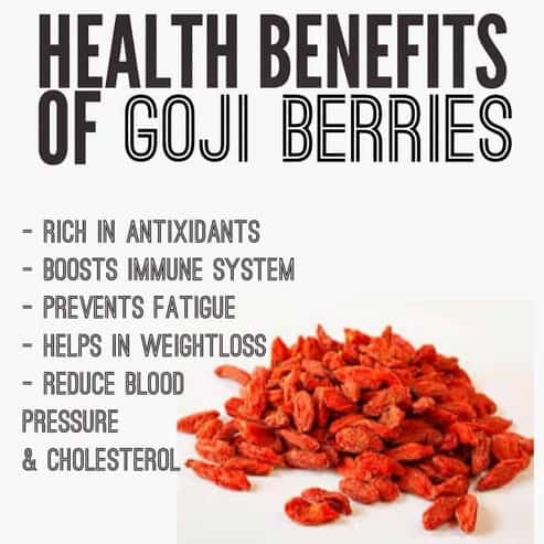 Organic Goji Berry Balsamic Vinegar 5 Fl Oz The Golden Leaf